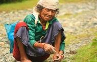 बारहनाजा : पूरे जीव जगत को साथ लेकर चलने वाली उत्तराखंड की कृषि प्रणाली
