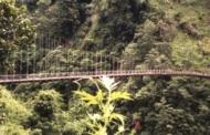नदी, जंगल और बाउल की तान