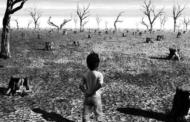 21वीं सदी के अंत तक पृथ्वी को 'जलवायु परिवर्तन' निगल जाएगा ?