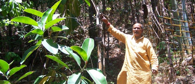 जंगली बने सीमा सुरक्षा बल के ब्रांड एम्बेसेडर