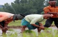 क्या हैं स्वामीनाथन आयोग की सिफारिशें, जिन्हें लागू कराना चाहते हैं किसान
