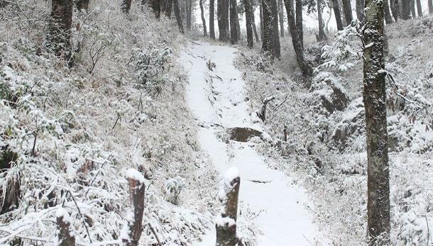 मुक्तेश्वर से बर्फ़बारी की कुछ तस्वीरें