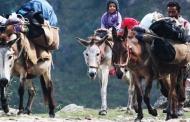 सफ़रनामा: अतीत के रास्ते