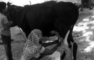 जब मां के प्रति नाइंसाफी का बदला लेने के लिए मैंने दूध में पानी मिलाया