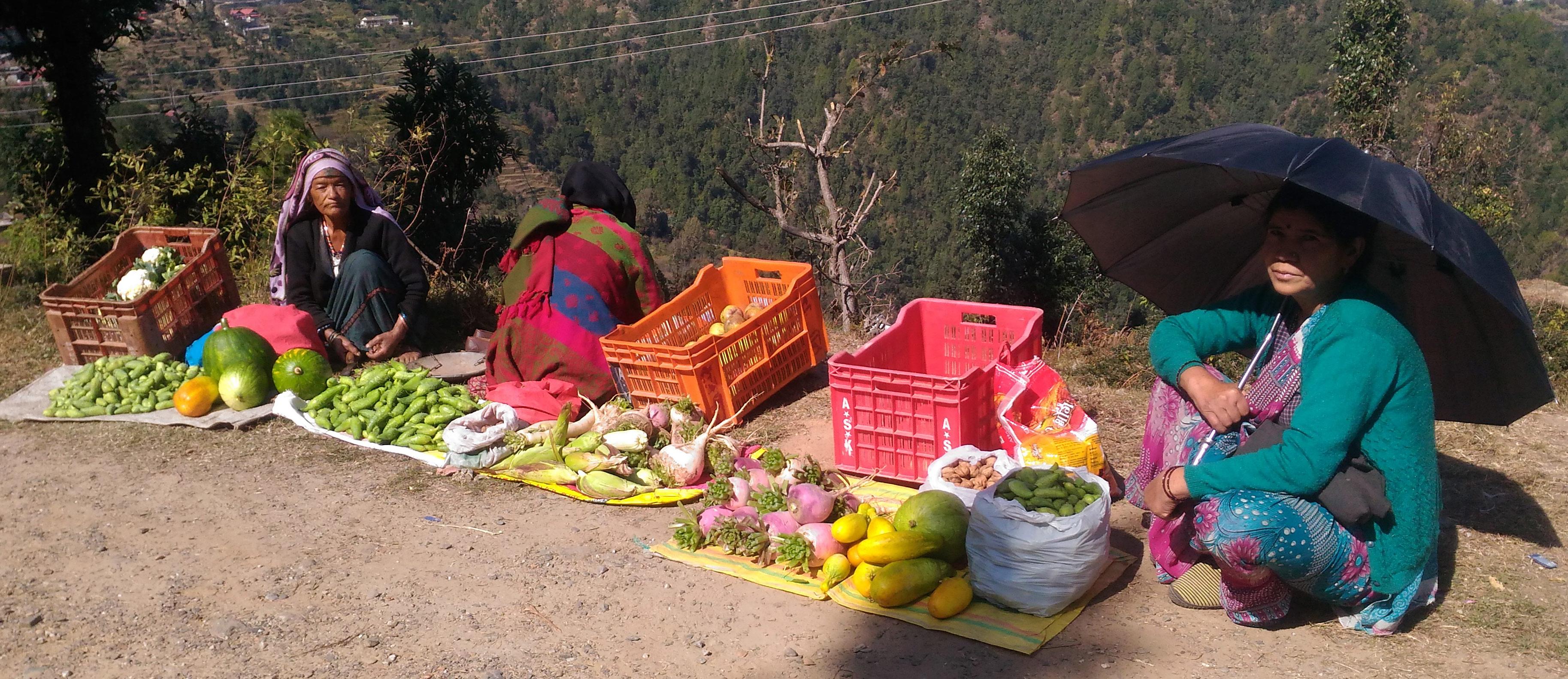 पहाड़ी क्षेत्र में सिमटती सामाजिक सोच और पर्वतीय कृषि