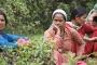 उत्तराखंड में रजस्वला स्त्रियों का गोठ-प्रवास