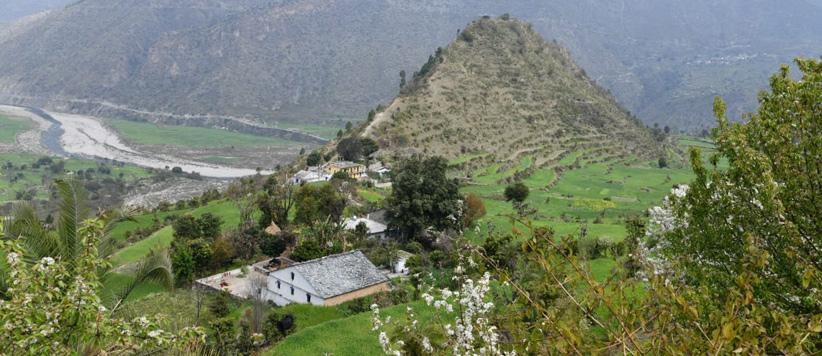 बेतालघाट की घाटी का वसंत - जयमित्र सिंह बिष्ट के फोटो