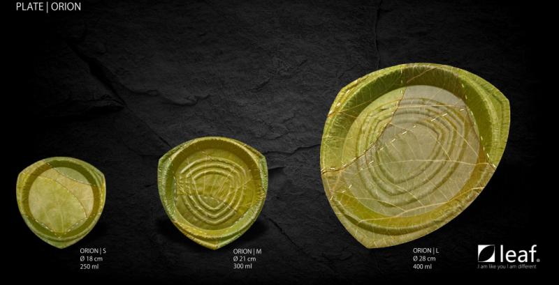 Manufacturing of Natural Leaf Plates in Uttarakhand