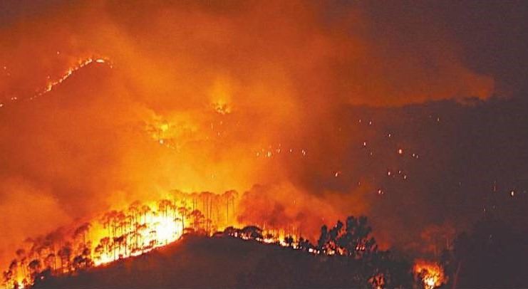 Fire in the Forests of Uttarakhand