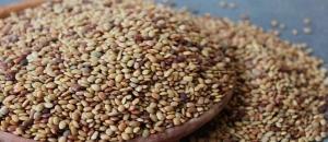 Gahat Daal Uttarakhand Food