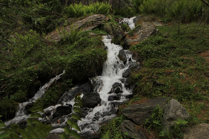 Dharali Sattal Trek Uttarkashi