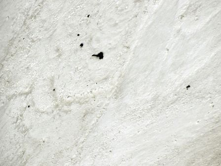 Nanda Devi Peak Rescue Mission Conflict