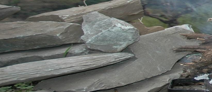 विलुप्ति की कगार पर पहाड़ का एक लोकदेवता