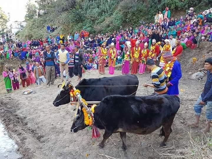 Jeetu Bagdwal Jagar Gatha