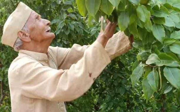 86 साल की उम्र में बागवानी से स्वरोजगार का मॉडल खड़ा कर कायम की मिसाल