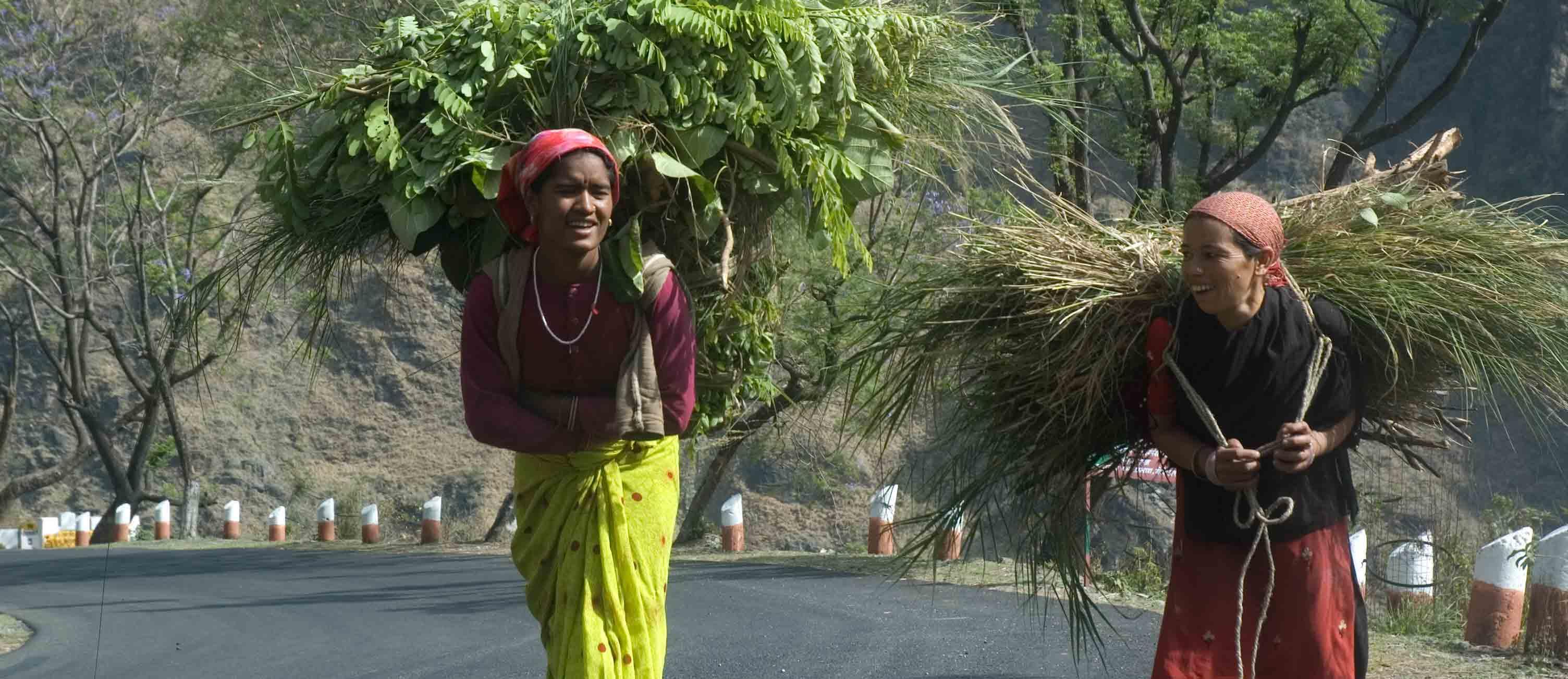 अपने कंधों पर पहाड़ ढोती महिलाएं: कमल जोशी की तस्वीरें