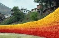 मसूरी में 15000 प्लास्टिक बोतलों से बनी उम्मीद की दीवार