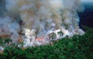 अमेजन की आग दुनिया का दम घोंट देगी