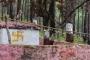चौफुलिया, गणानाथ का गोलू देवता मंदिर