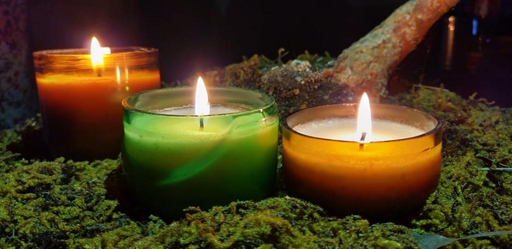 Harela Society and their Jugnoo Lights