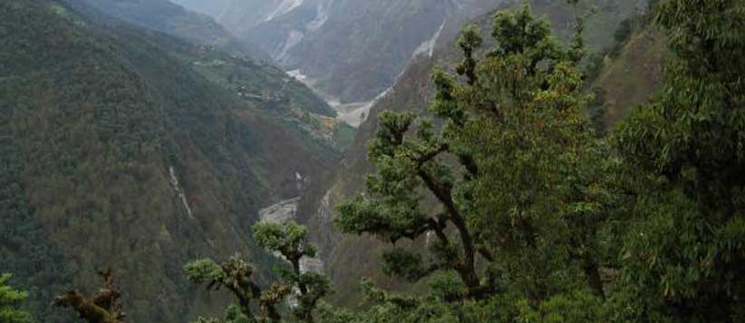 Disaster of Gauna Tal Garhwal