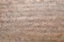 शौरसेनी से उपजी है कुमाऊनी भाषा