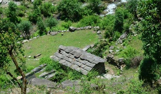 रानीखेत के भैंसोली के जंगल में एक ऐसा भी बूढ़ा रहता था