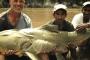 काली नदी की नरभक्षी मछली और चिता से तीन बार वापस आये नेपाली बुबू का किस्सा