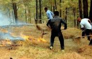 पहले ही तैयारी से उत्तराखंड के जंगलों को आग लगने से बचाया जा सकता है