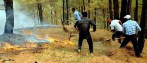 Forest Fire in Uttarakhand