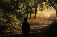 उत्तराखण्ड के जंगलों में इंसान का बढ़ता दखल खतरनाक है