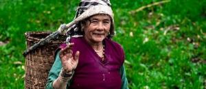 Himalayan Women Article by Vinod Upreti