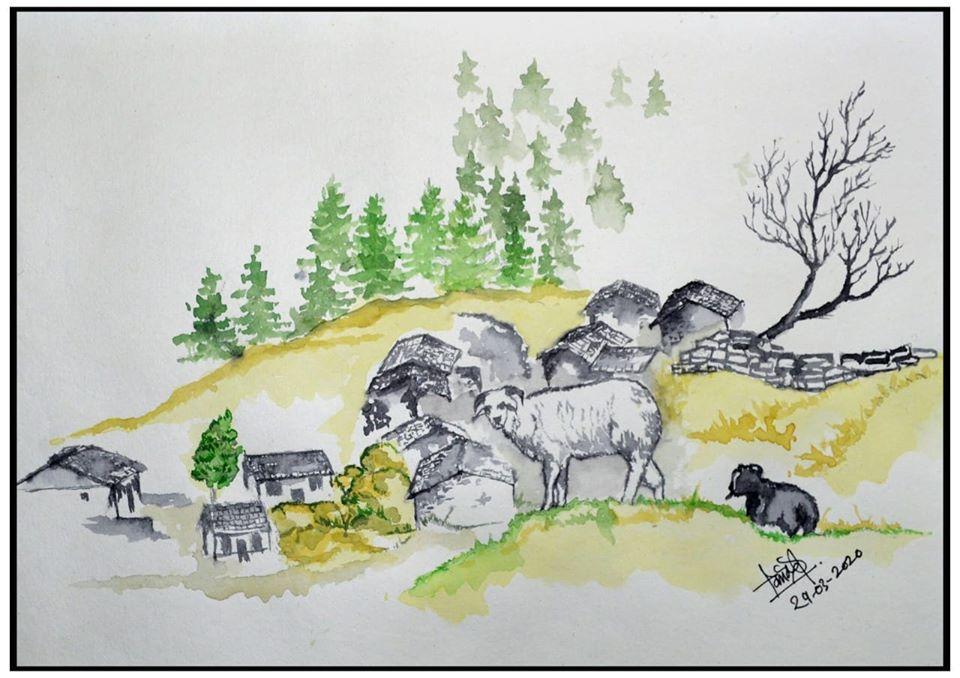 Himalayan sheep