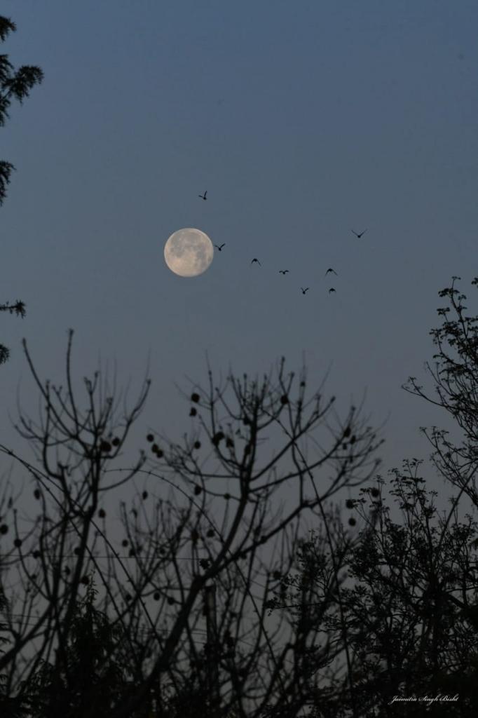 Photos of Full Moon