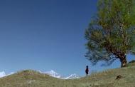 देवताओं को अपने जंगल समर्पित कर हमारे पुरखों ने बचाया है पर्यावरण