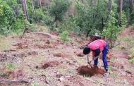 प्रकृति से प्यार करने वाला युवा पहाड़ी किसान : चंदन सिंह नयाल