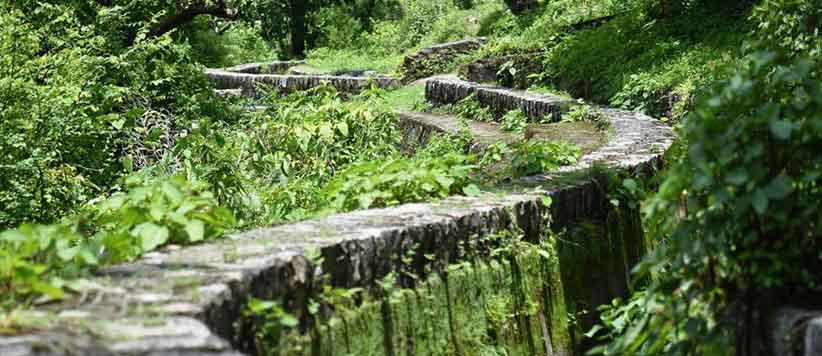 Jakhan Nahar Canal Dehradun