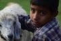 तिगमुल्या : सूरज से अपनी रोटी के लिये लड़ने वाले भोले पहाड़ी बालक की लोककथा