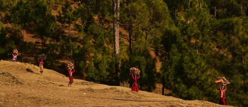 पहाड़ी महिलाएं पलायन के लिये कितनी जिम्मेदार