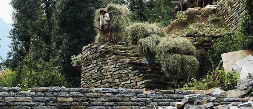 चट्टान से गिरकर अकाल मृत्यु को प्राप्त पहाड़ी घसियारिनों को समर्पित लोकगाथा 'देवा'