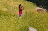 एक शब्दहीन नदी: हंसा और शंकर बहाने न जाने कितने पहाड़ियों का सच कहती शैलेश मटियानी की कहानी