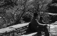 काली कुमाऊँ का शेरदा